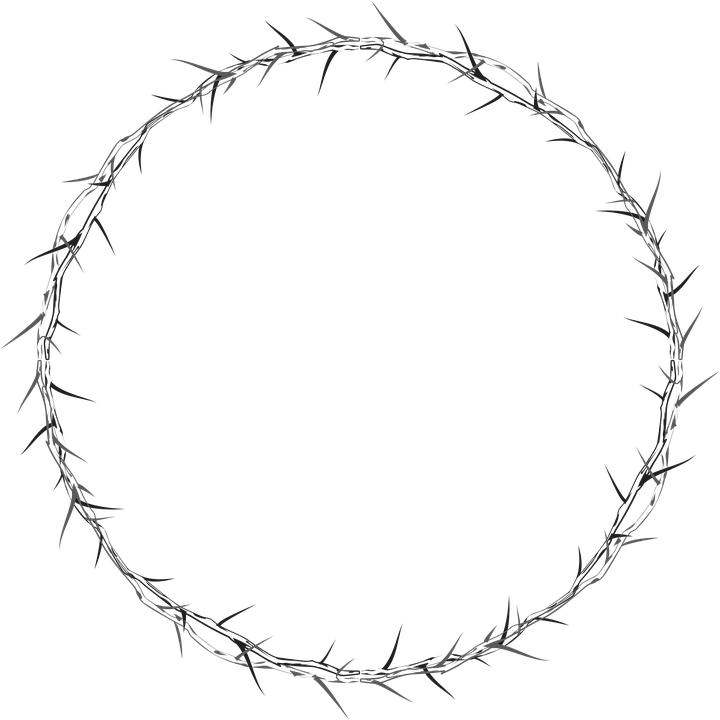 crown-of-thorns-2773399_960_720
